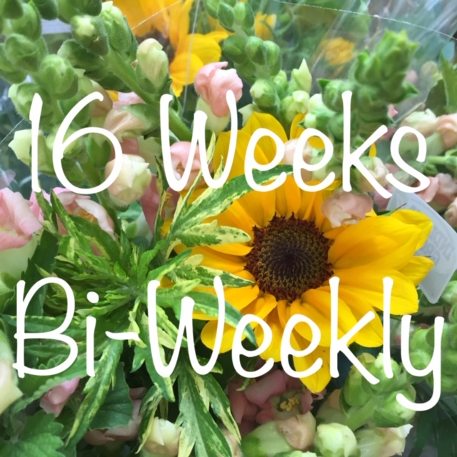 8 Bouquets, One Every Other Week for 16 Weeks - $18/Bouquet for a total of $144Billed in 4 equal installments of $36Sign-up anytime before Friday, June 14th