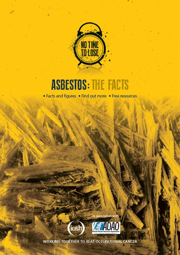Factsheet for managers - Which explains where asbestos can be found and how to develop a strategy to prevent exposure.