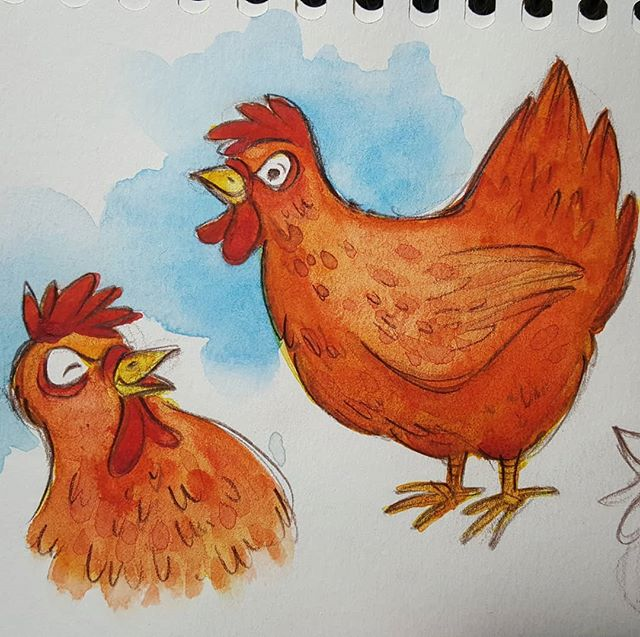 More chicken sketches. . . . . #sketchbook #watercolor #chickencharacter #rebeccastuhff #watercolorsketchbook #drawinganimals #littleredhen