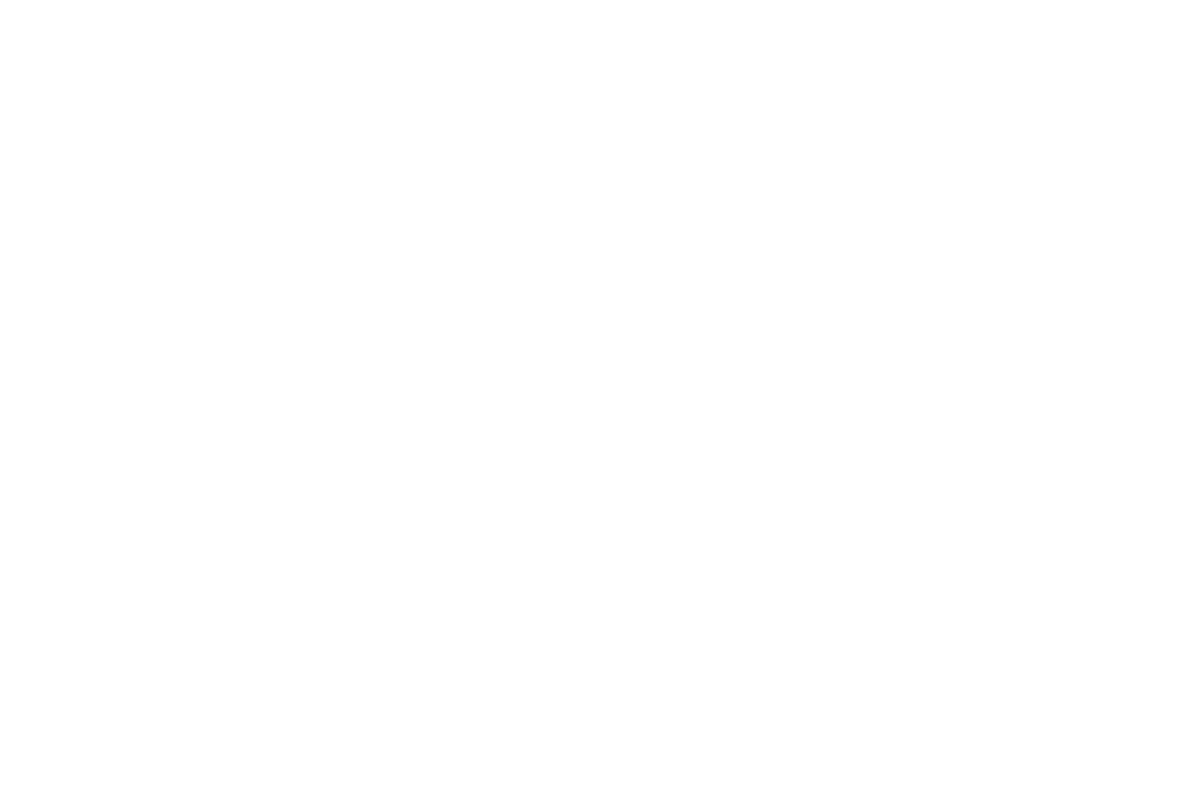 Chicago South Asian Film Festival - 2018.png