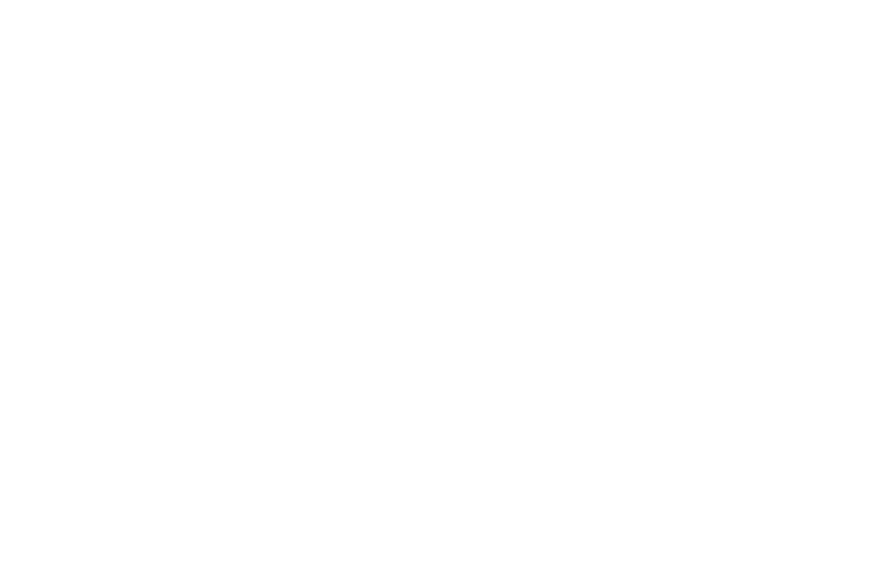 Commffest Global Community Film  Arts Festival 2018.png