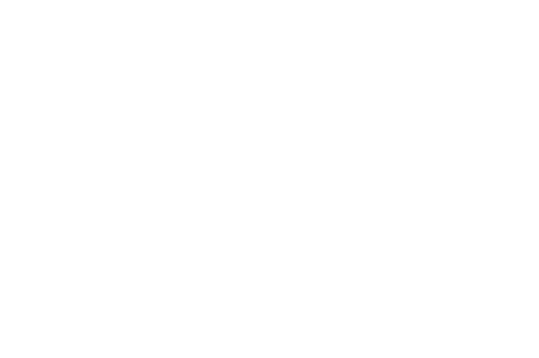 17. OFFICIAL SELECTION - Voiceless International Film Festival - 2018.png