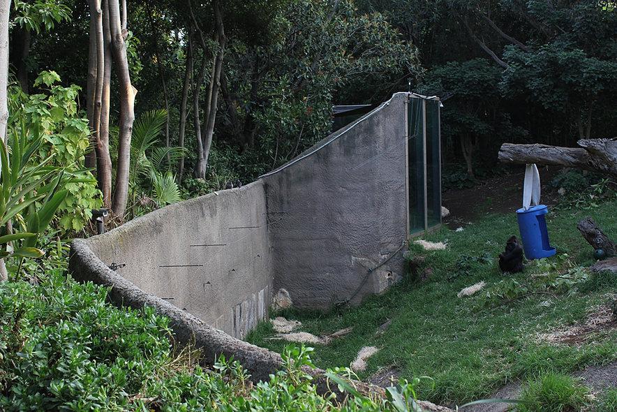 zoo-web2.jpg