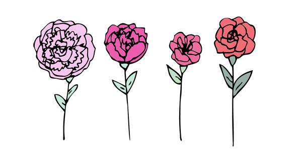frolicflowers.jpg