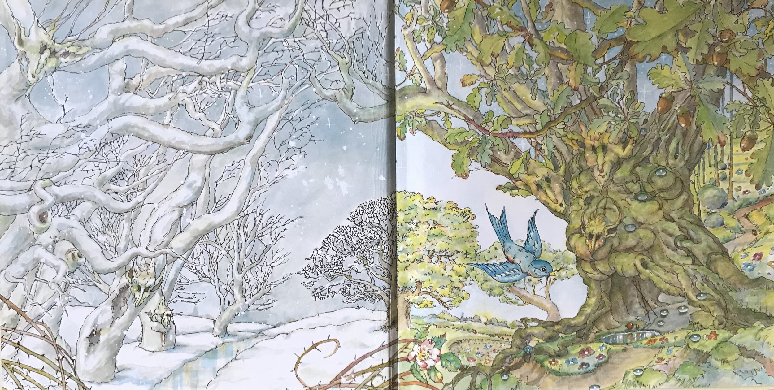 Gaye Chapman's front endpaper for  Little Blue  (Little Hare 2008). The back endpaper is completely different ...