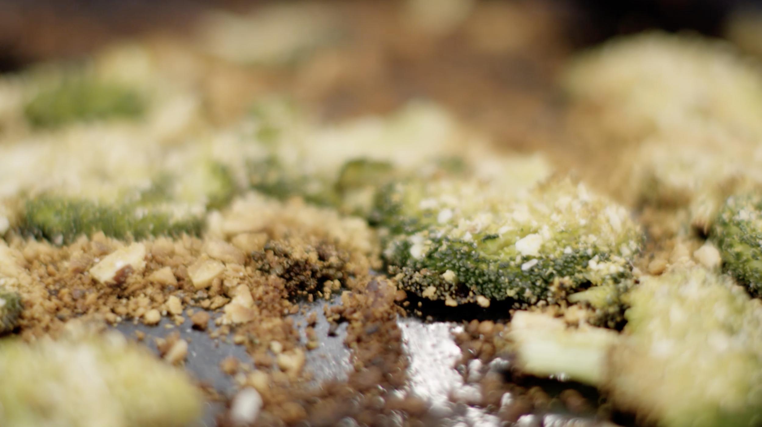 Smashed Broccoli