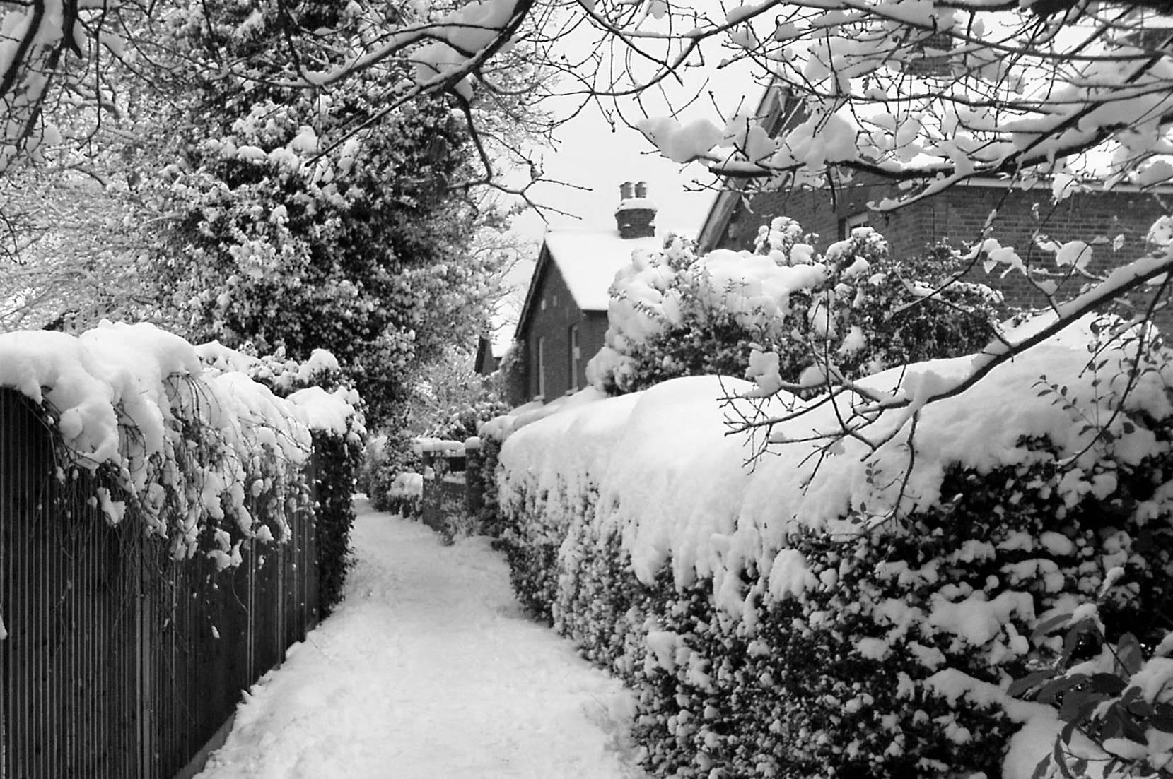 Church Walk in the snow