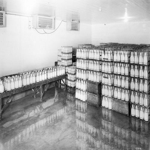 milk-cold-storage-500x500.jpg