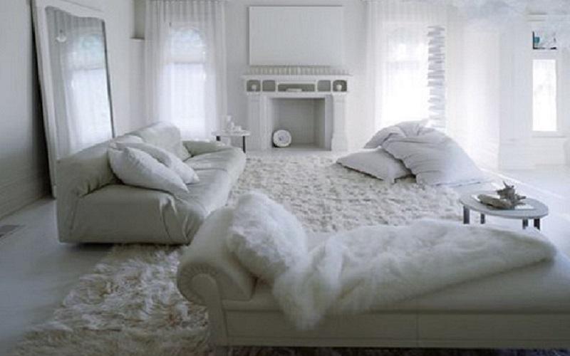 Suri Alpaca rug, fur rug with Hua fur throw, fur blanket over sofa