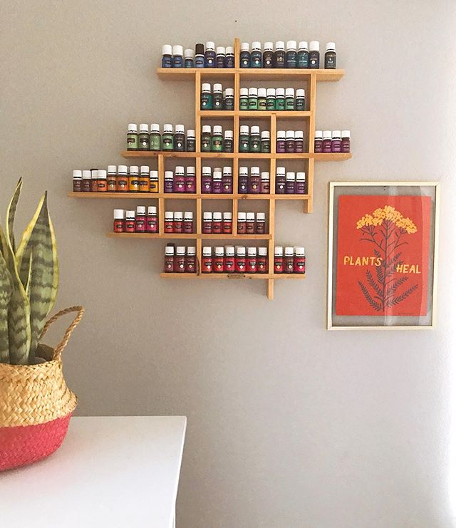 Plants heal 🌿 Question: does anyone know if there is a theme/method to the color of the bottle labels for @youngliving oils? I feel like i need to know this.