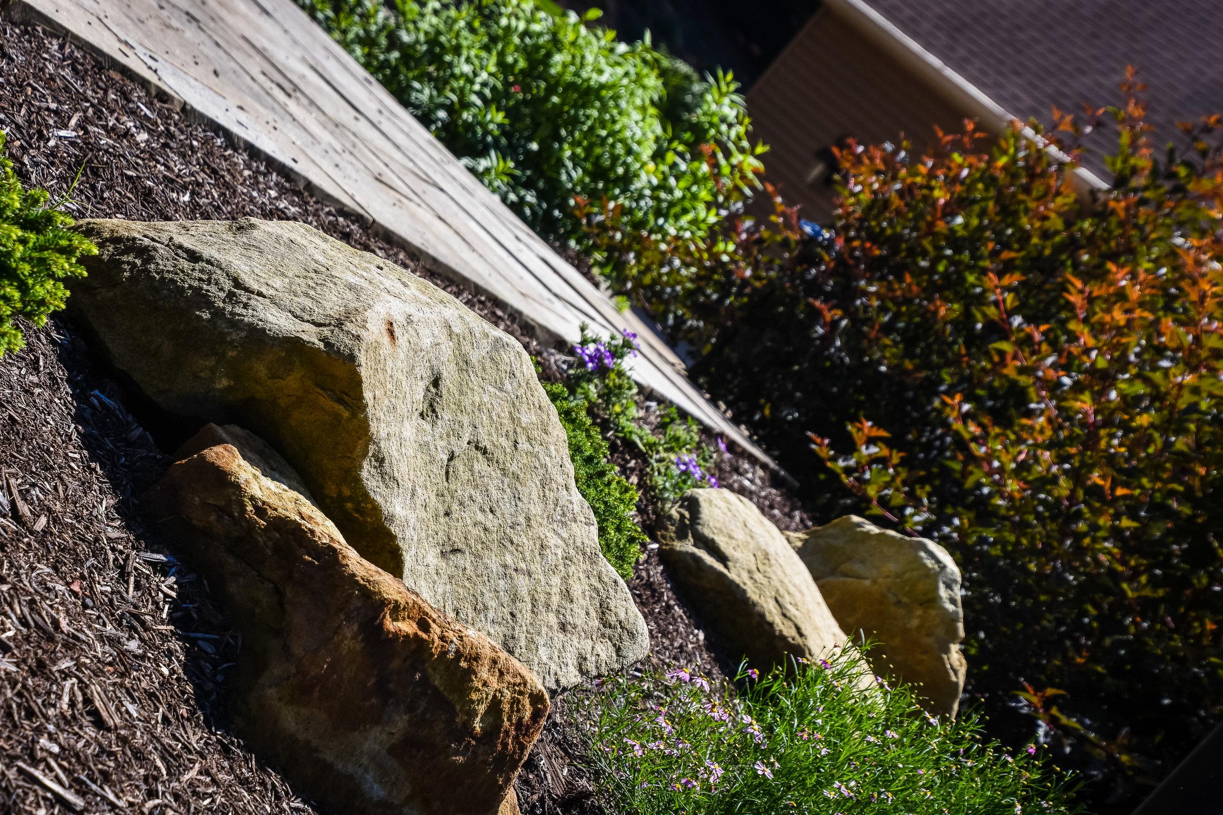 Buckeye_Landscaping63.jpg