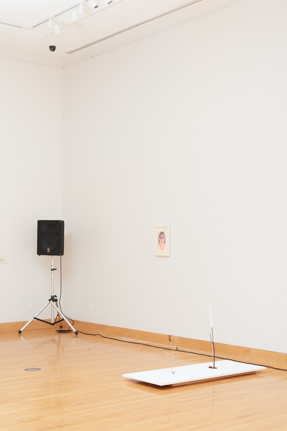 From left to right: Sound by Lucky Dragons, Photography by Josh Shaddock, Sculpture by Lesley Jackson.