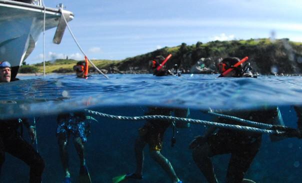 434136- DISCOVER SCUBA DIVING TO SHIPWRECK 4.jpg