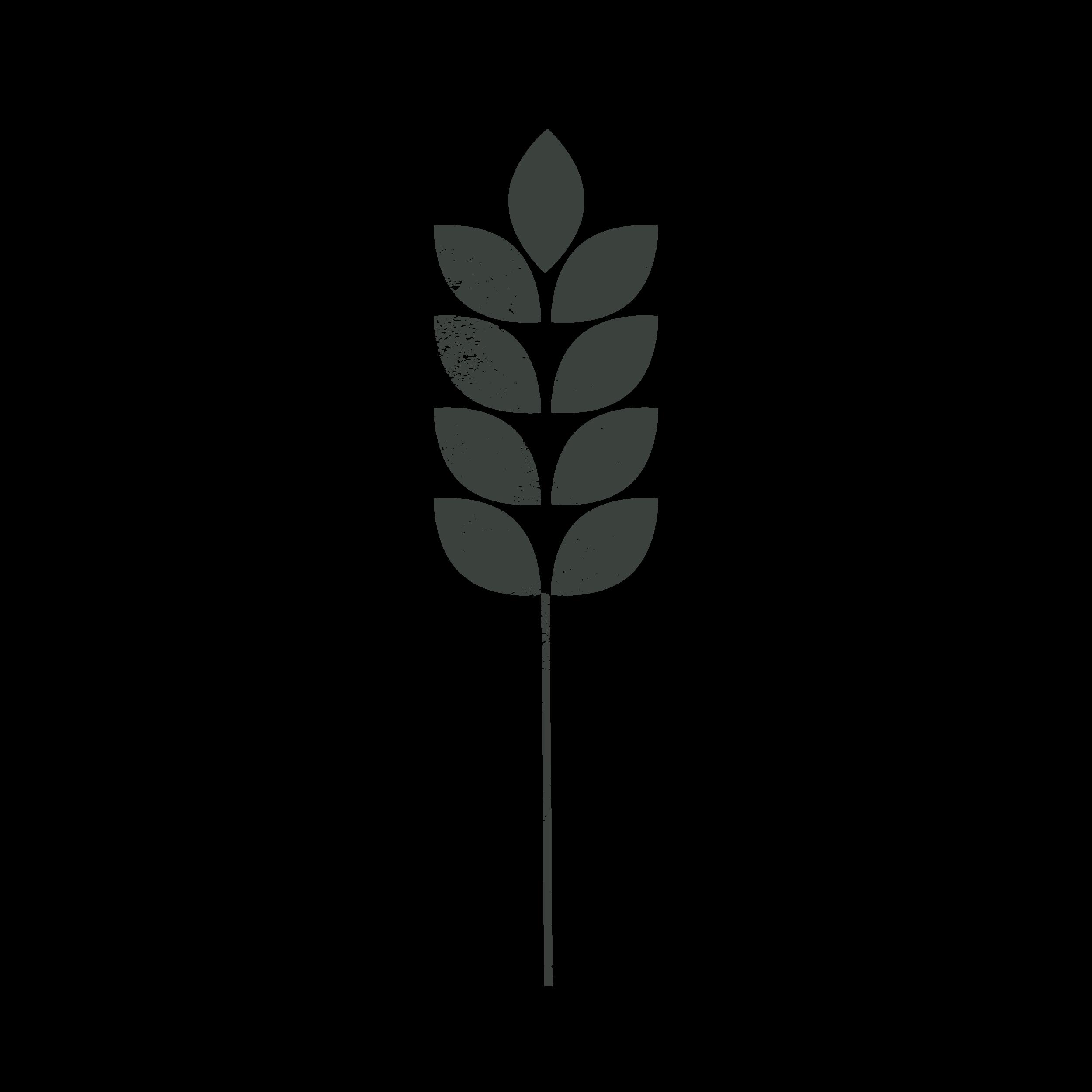 Prairie Basic Logo-Wheat Dk.png