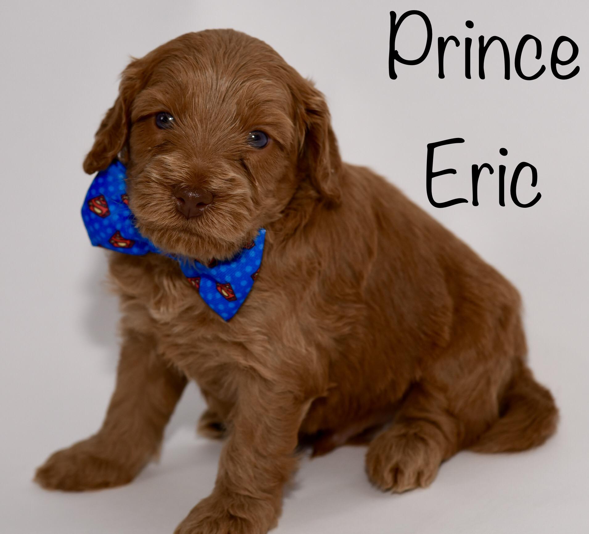 princeeric4weeks.jpg