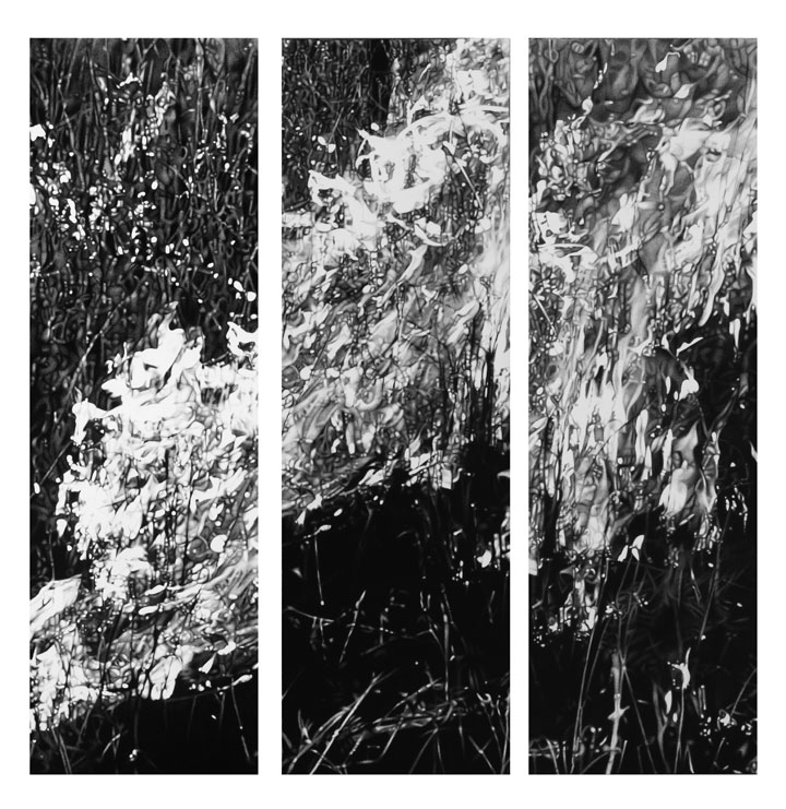 Triptych  charcoal on paper  sold