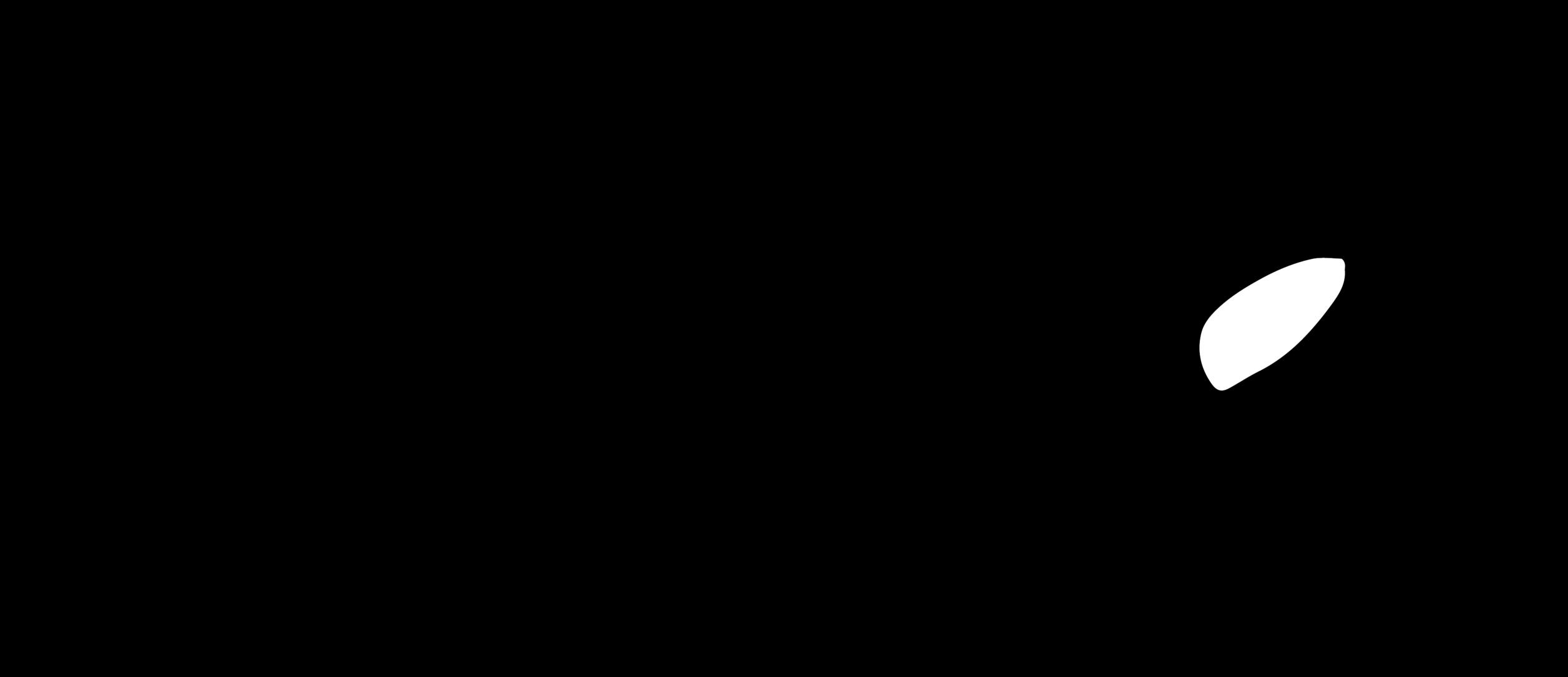 taka-signature-transparent.png