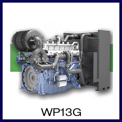 WP13G.jpg