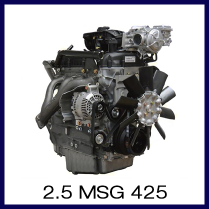 2.5 MSG 425.jpg