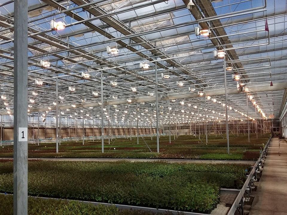commercial grow house.jpg