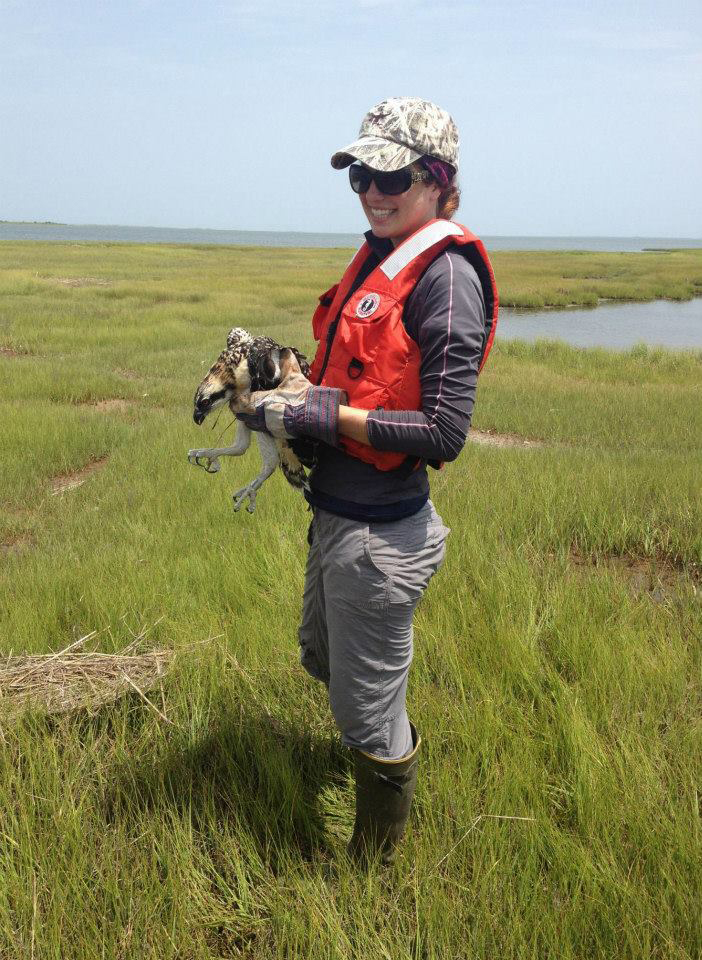 Interview conducted by Erin Harrington, a Ph.D. student studying science communication and avian ecology in the  Scott McWilliams lab  at the University of Rhode Island
