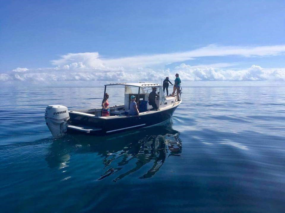 Emma Strand collecting fish samples off of a boat in Bermuda