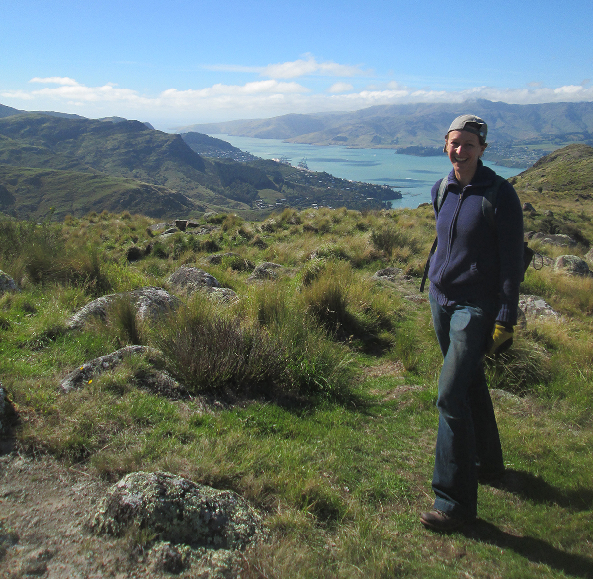 Up in the Port Hills around Lyttelton Harbour