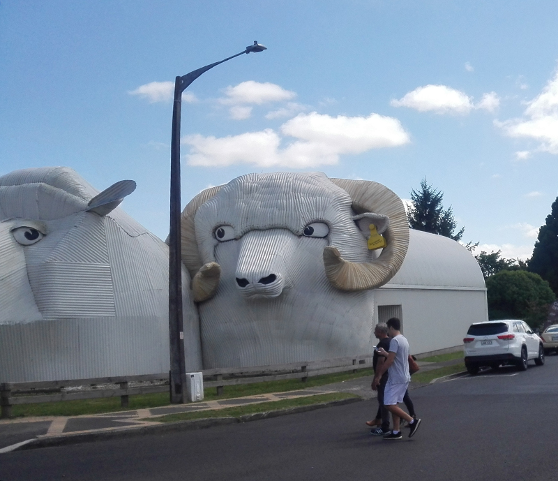 corrugated-sheep.jpg