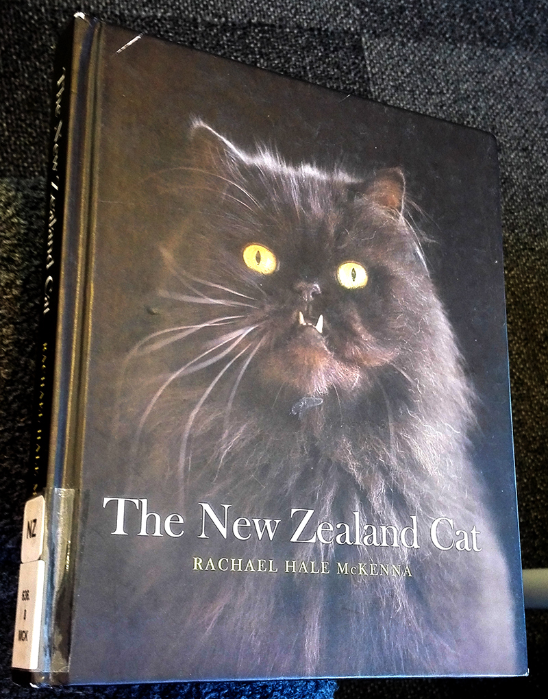 New Zealand cats are murderers and should be controlled the way dogs are. They should not be let out at night and they should be microchipped. I'd also like to see them kept on a lead when outside their property as they are always shitting on mine.
