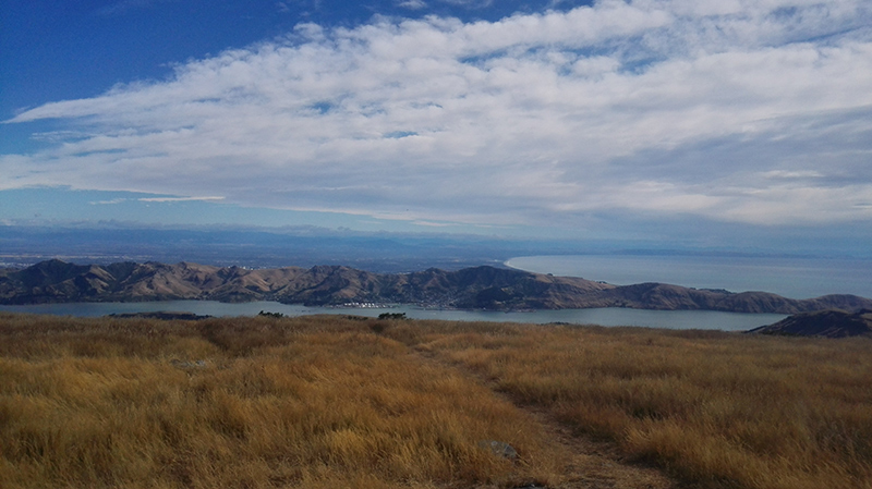 2019-02-20-10.37.05-lyttelton-from-mt-herbert.jpg