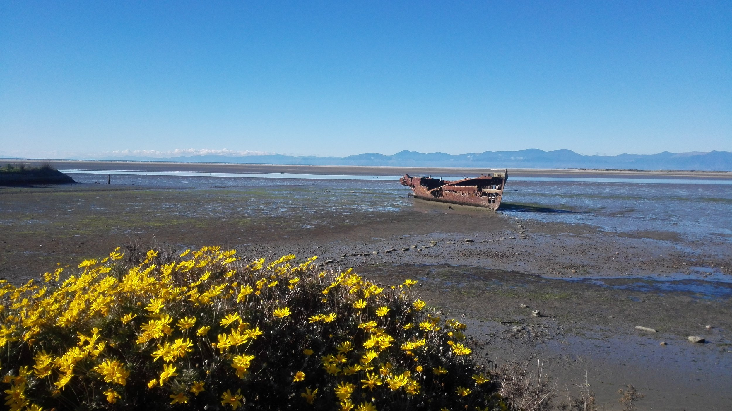 Motueka estuary and the Janie Seddon