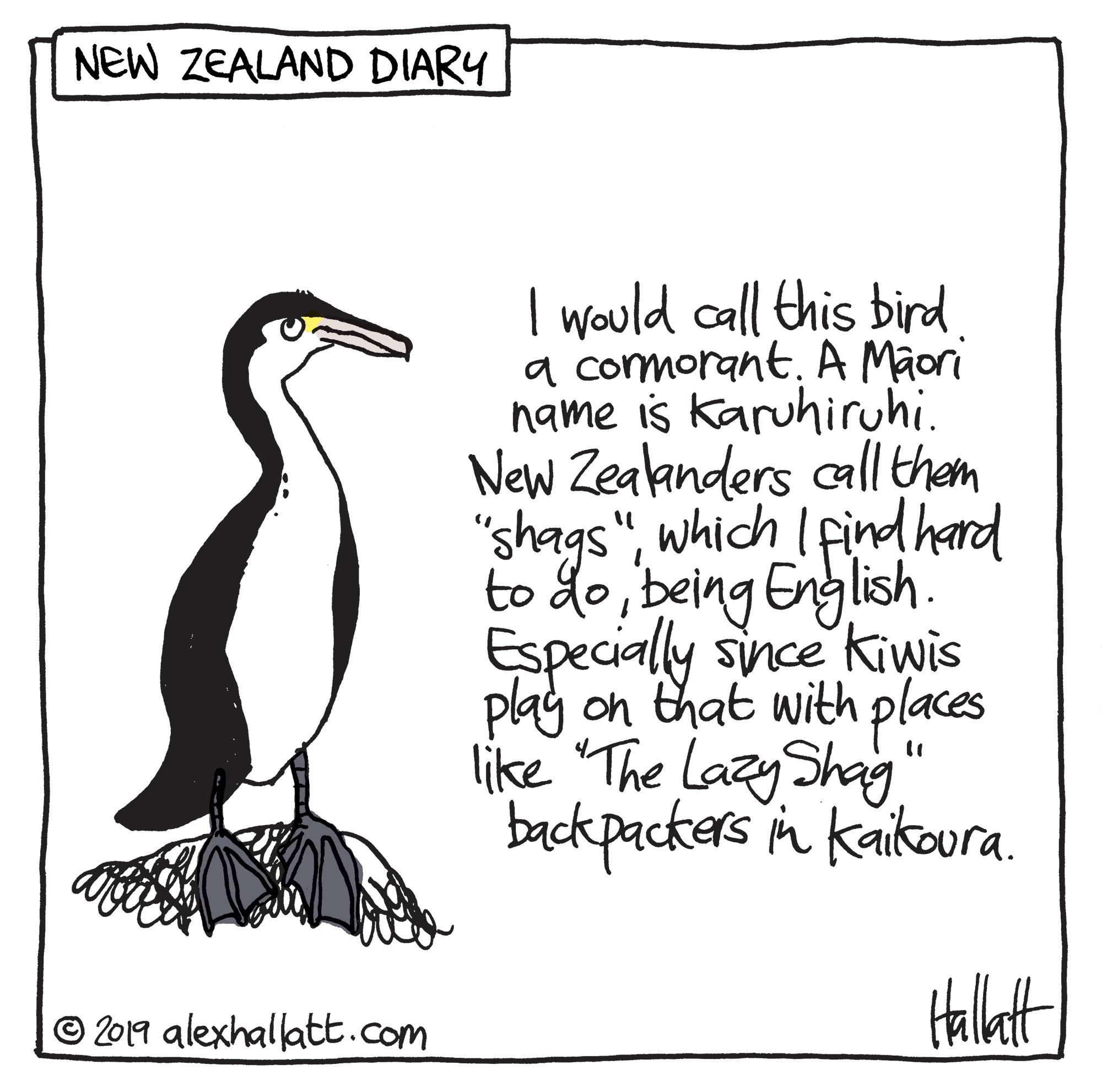 Doodle-NZdiary-78.jpg