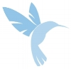 HUMMINGBIRD SOLO.jpg