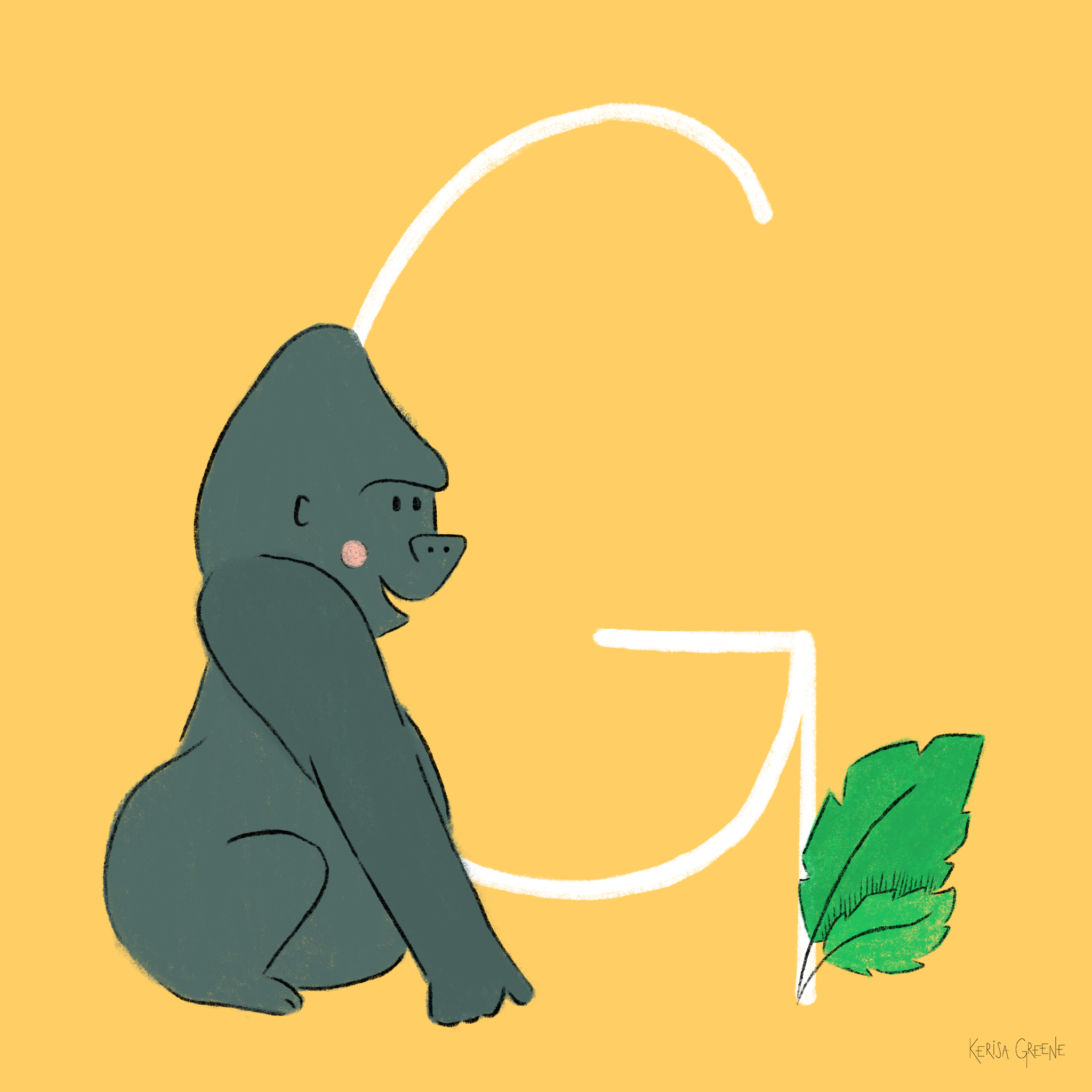 G is for Gorilla   An adult male gorilla will eat around 50 pounds of food a day!