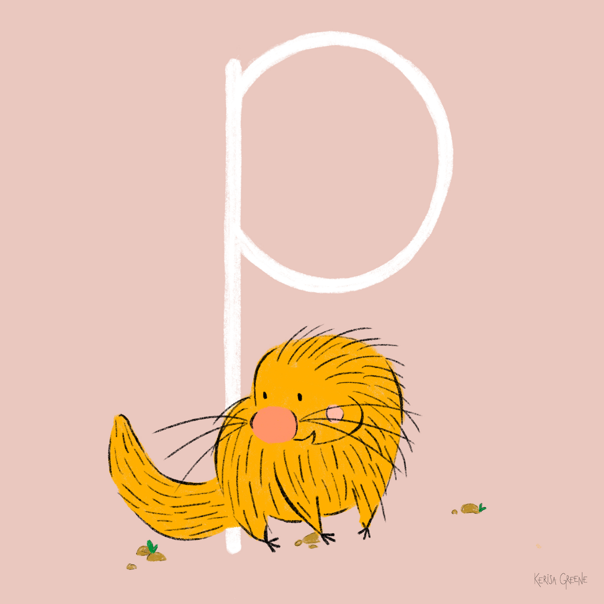 P is for Porcupine   This cutie is the prehensile-tailed porcupine and lives most of its life in trees!