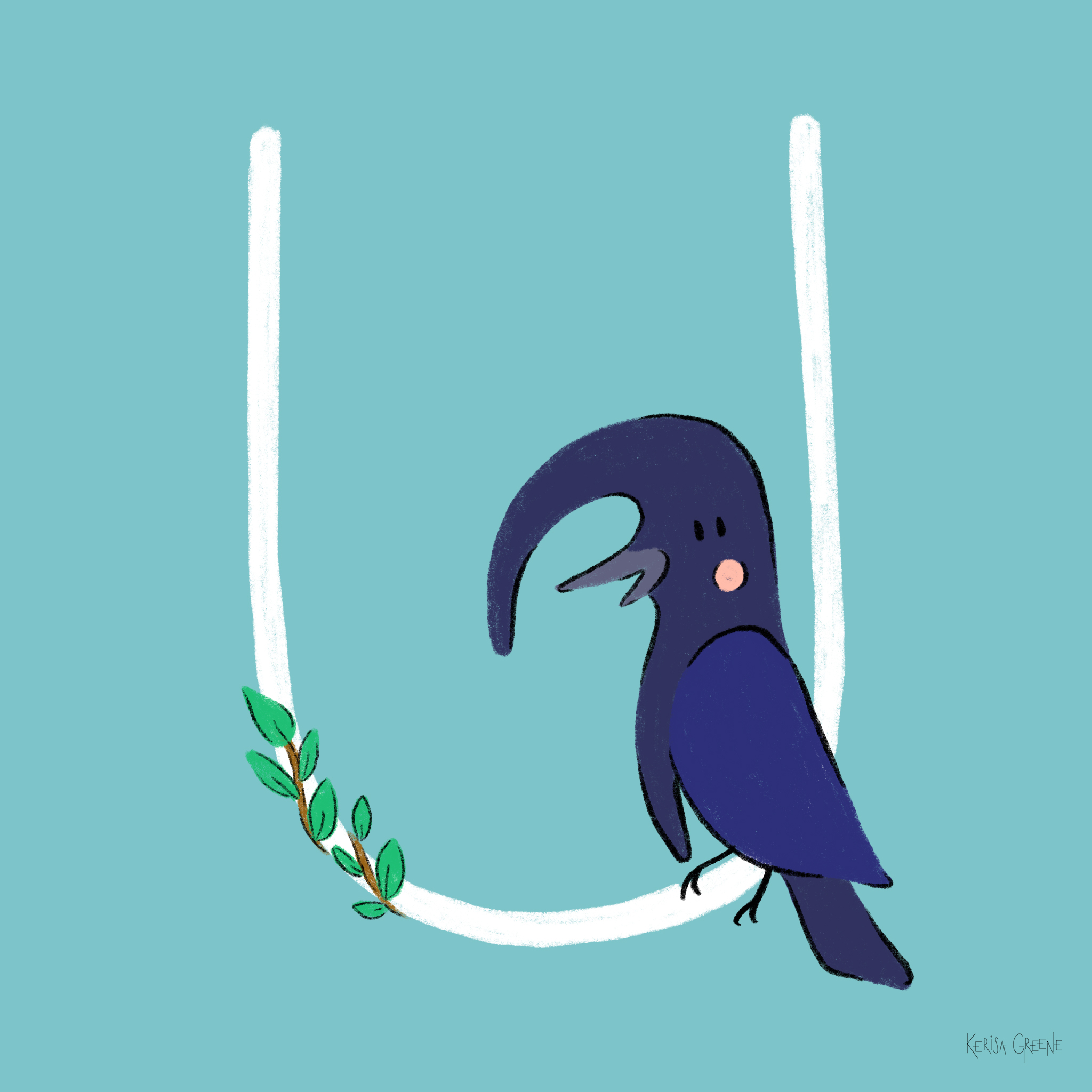 U is for Umbrella Bird  These birds are altitudinal migrants, which means they migrate to different altitudes in the mountains instead of migrating across the land.