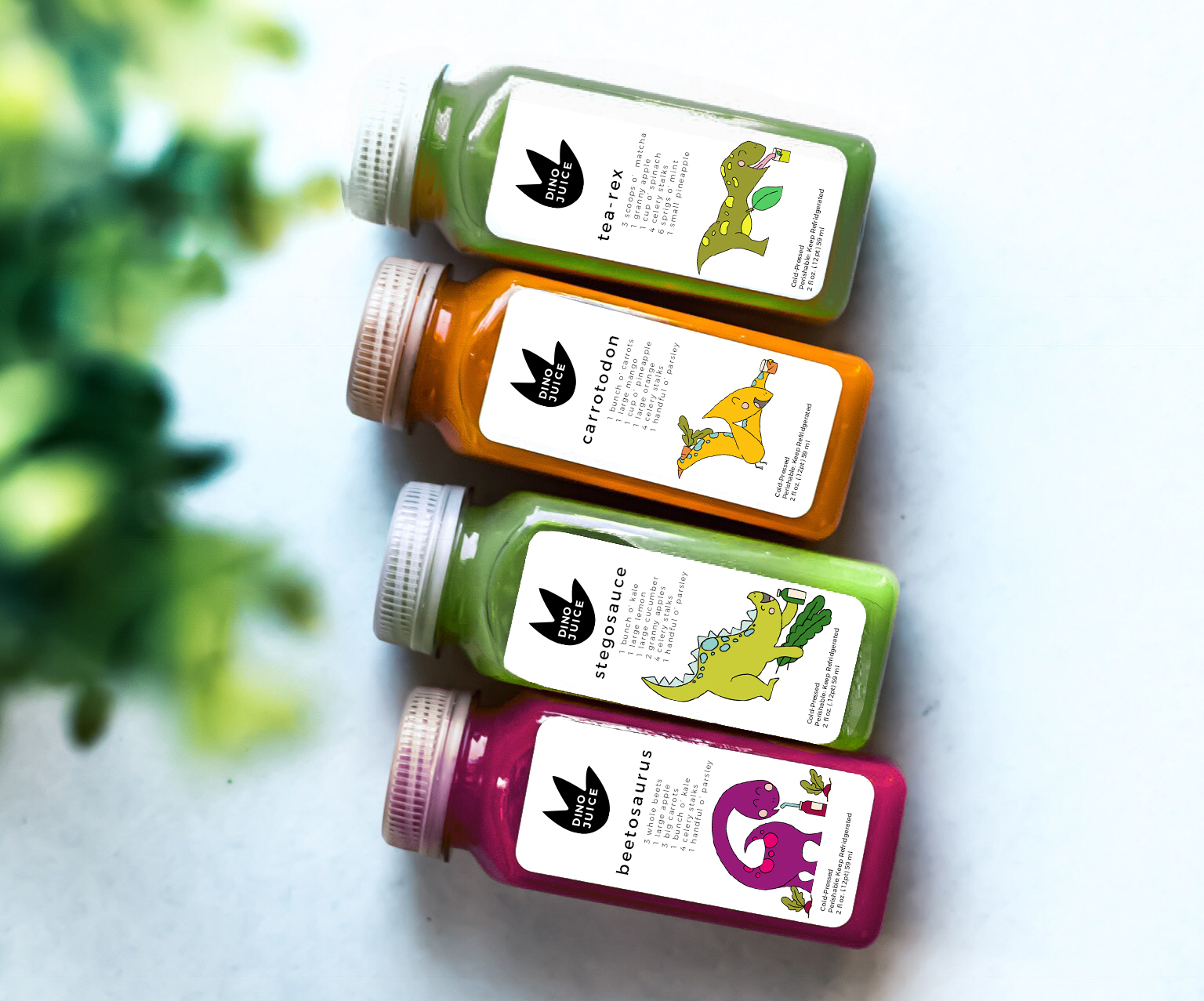 Dino Juice |  Branding & Packaging Concept