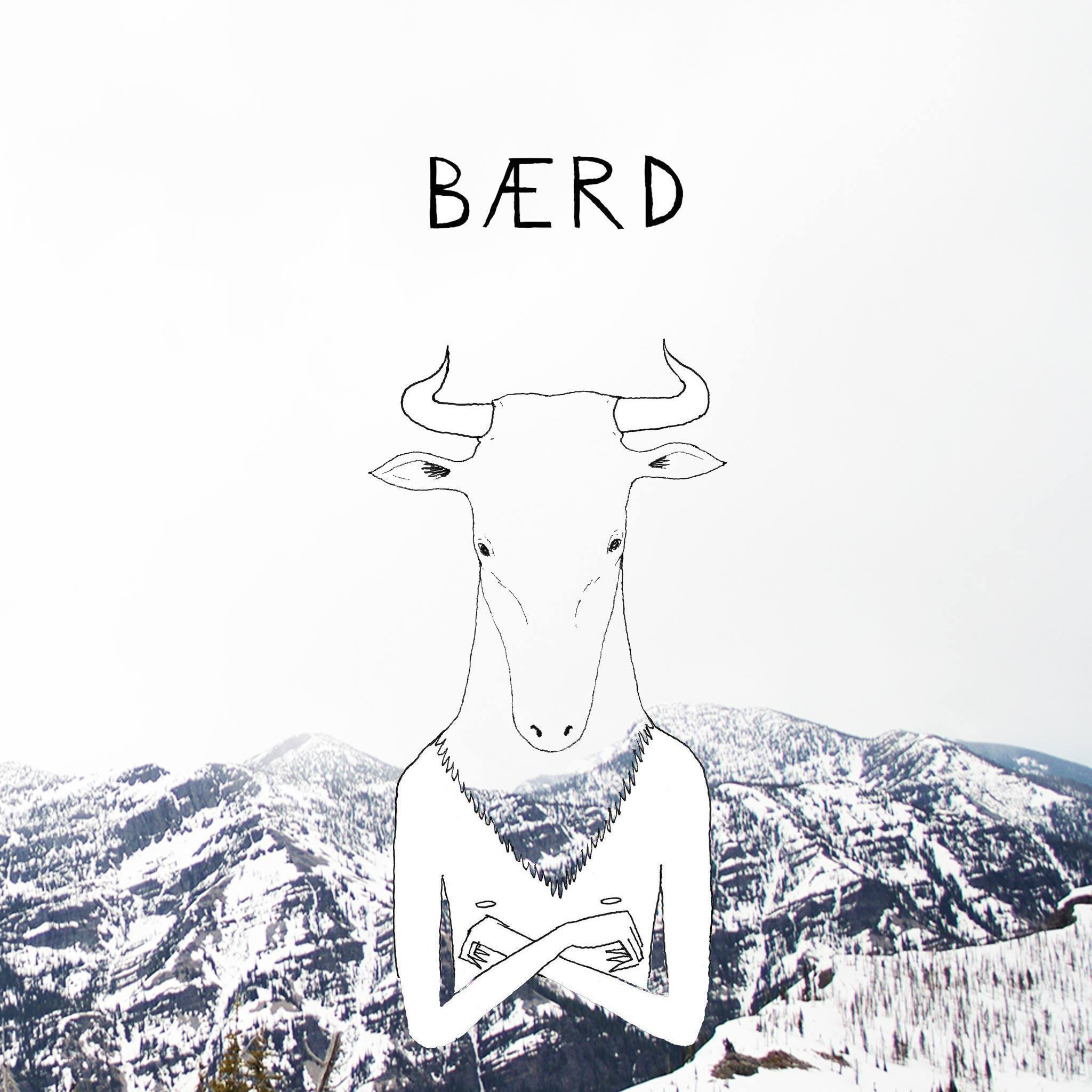 BAERD - BAERD is available on all streaming services -                                                Click HERE to hear BAERD on SoundcloudBAERD is a progressive folk band from Boston, MA. Founded at Berklee College of Music, the group traces together influences from Jazz, Americana, Classical, R&B, and World Music. BAERD's lyricism and instrumental precision is inspired by the likes of Joni Mitchell, Bob Dylan, The Punch Brothers, and Radiohead.Their debut album Progress, released on September 1st, 2016, explores the fragility of the moment and the relationship between people and time. Progress is a comment on the vastness of our own world and an immersive dive for BAERD fans new and old. On the precipice of innovative folk, BAERD takes a seat among contemporaries Andrew Bird, Punch Brothers, Nickel Creek, The Goat Rodeo Sessions, and Department of Eagles. Through their music, BAERD strives to help people make better sense of themselves and others in this great, big world.