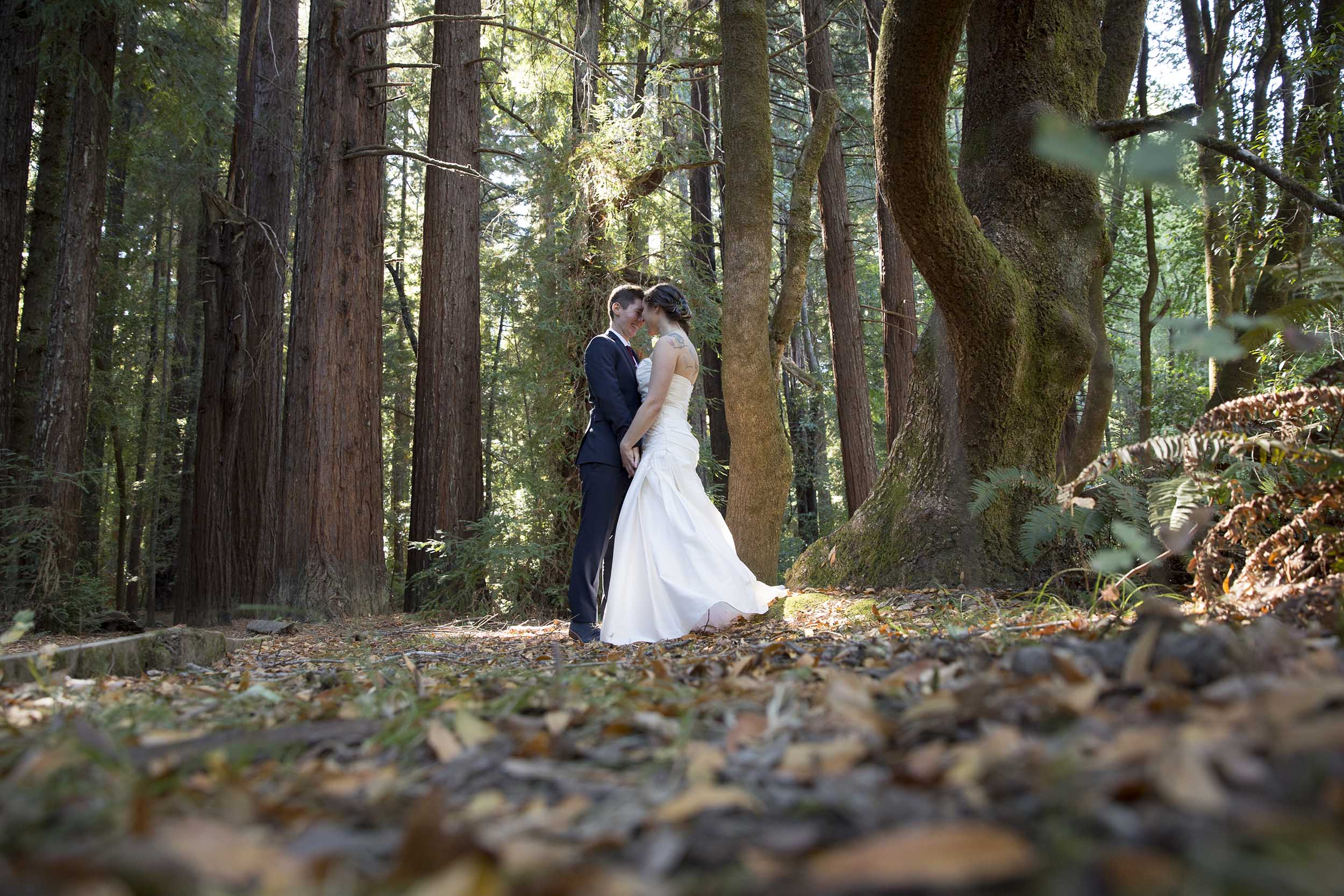 redwoods_wedding.jpg