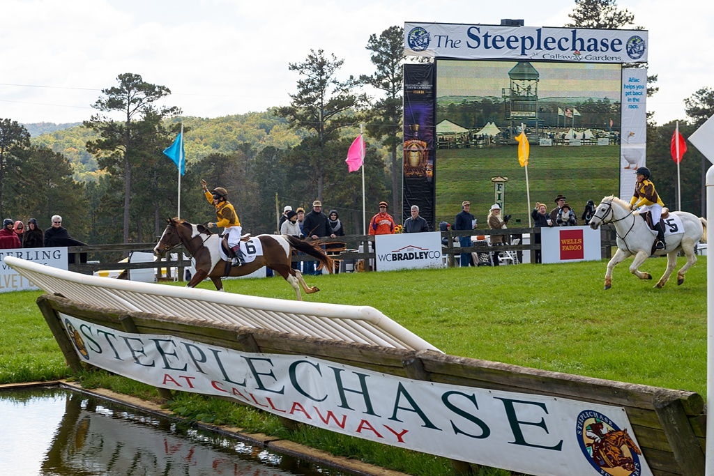 steeplechase-00087.JPG