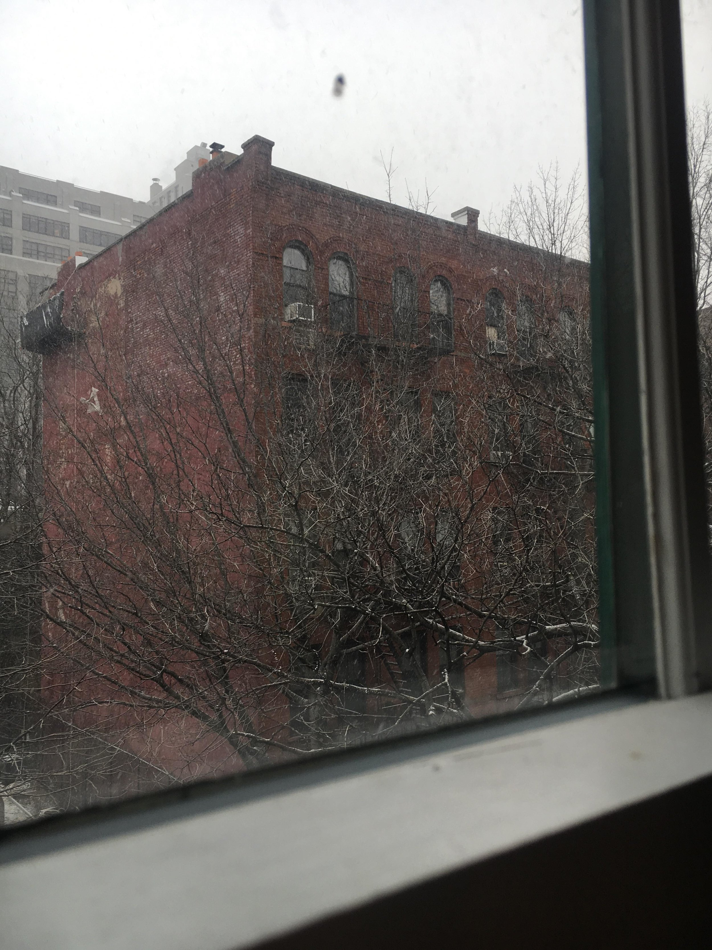 It snowed on my second to last day in Brooklyn! It was lovely!
