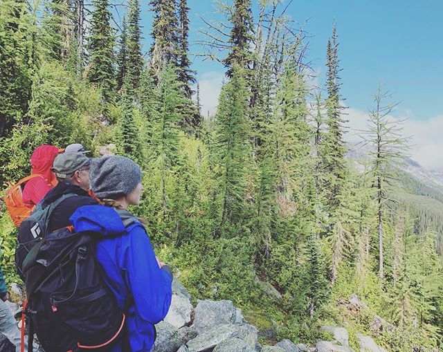 Another epic Mountain Hub Hiking Club hike. This time it was Jumbo Pass. Thanks as always for the expert guiding and bad jokes, @playwest. 5 ⭐️ 's for Guide Skinner!! 😝 . . . . #community #getoutdoors #jumbo #hiking #invermerebc #britishcolumbia #mountainhub #coworking #supportlocal