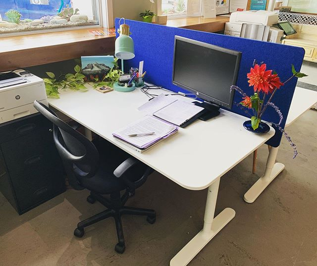 We have a dedicated desk with your name on it! $175/month and get all the perks of working out of the Mountain Hub: great people, 24/7 access, business address and a place to leave your office stuff behind ✌🏽 #invermere #invermerebc #coworking #coworkingspace #office #officespace #forrent #smallbusiness #supportlocal #entrepreneur