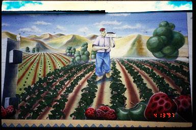 Strawberry picker mural