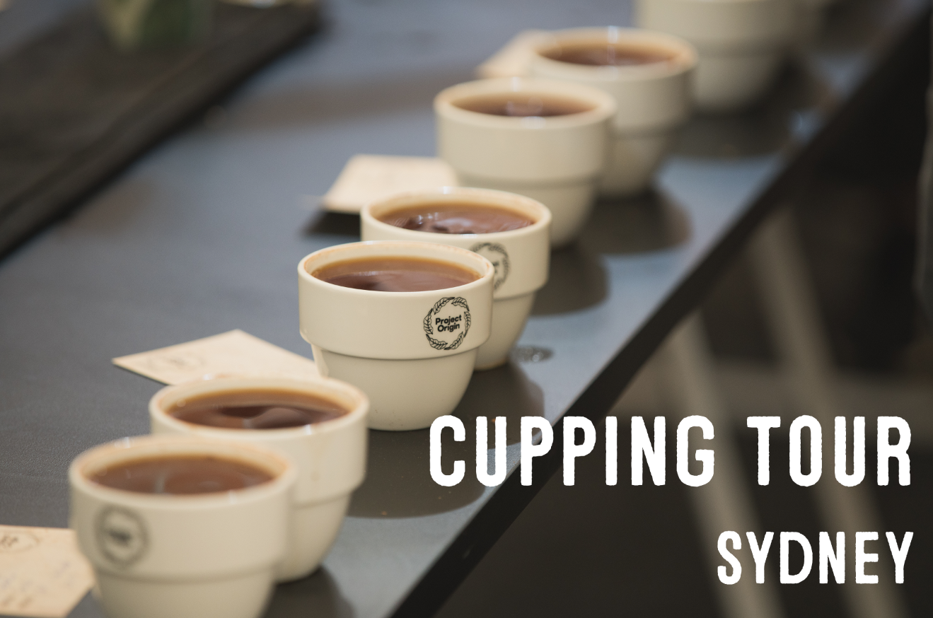 cuppingtourSYD.PNG