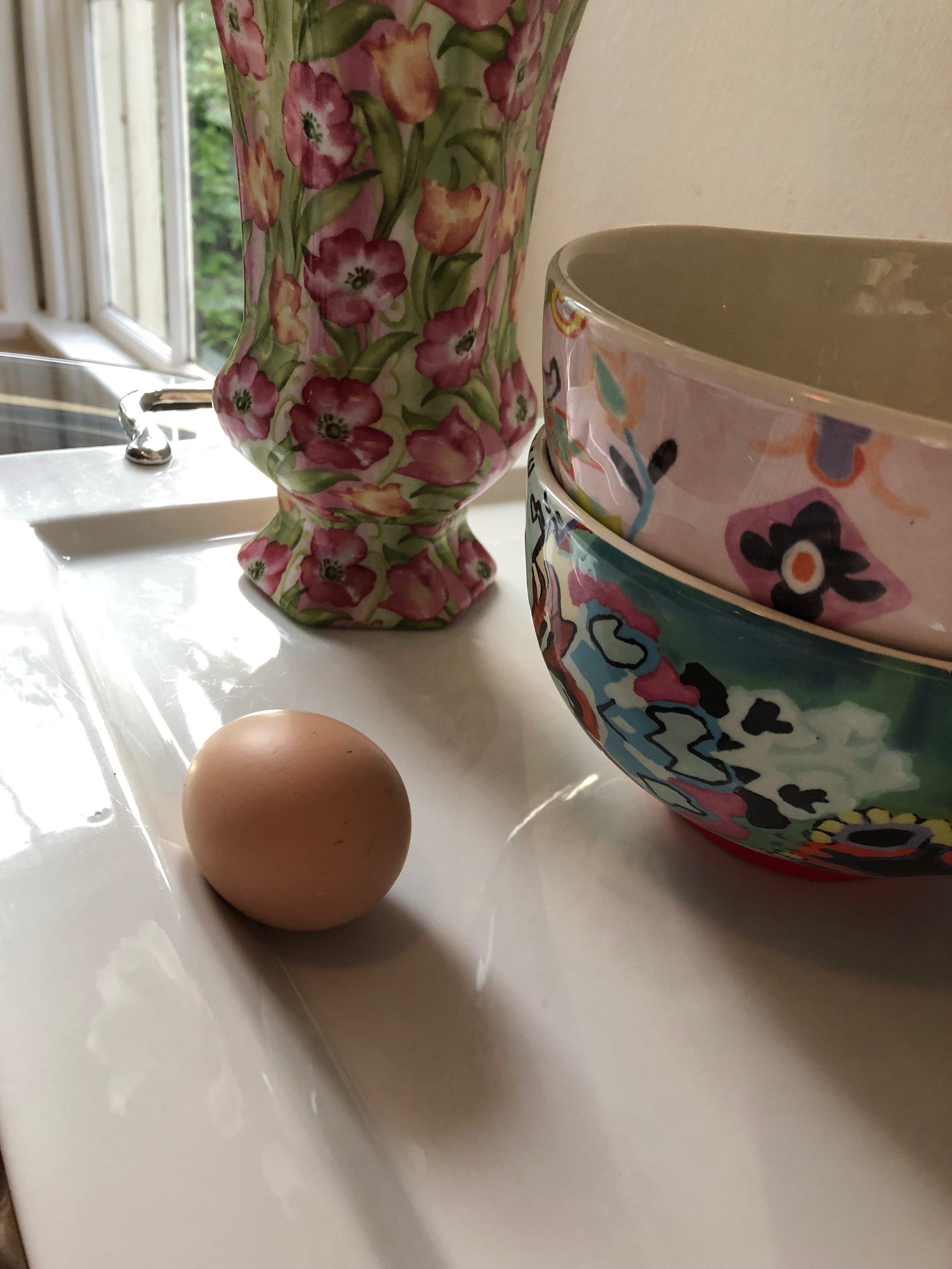 Mini's first egg!