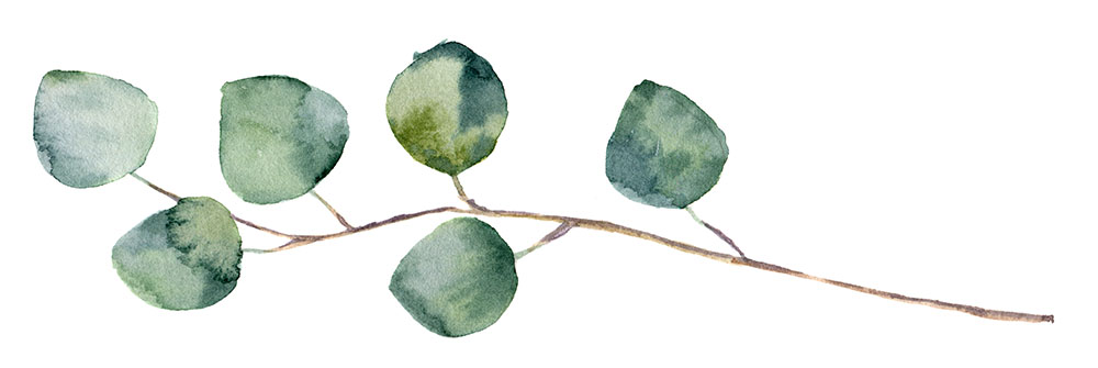 Watercolour_Stem_1000px.jpg