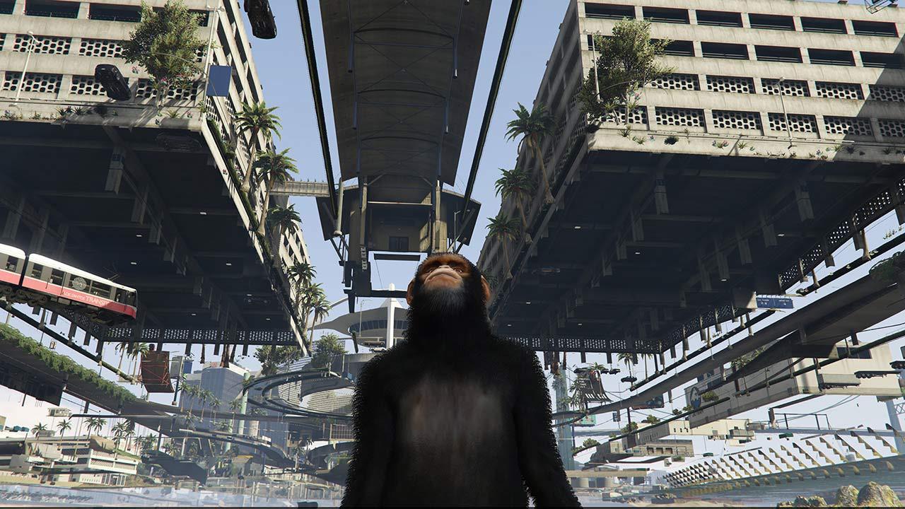 grand ape town 2.jpg