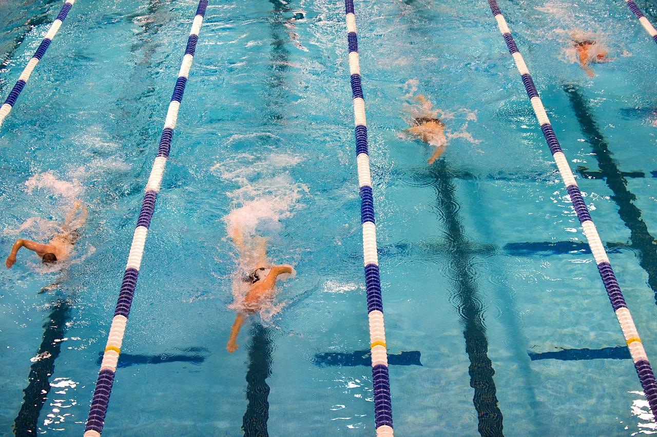 swimming-659903_1280.jpg