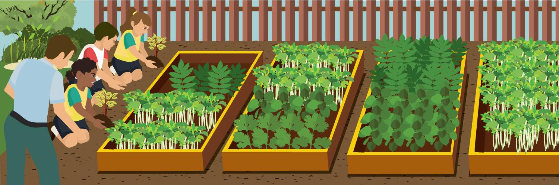 school-gardens-header.jpg